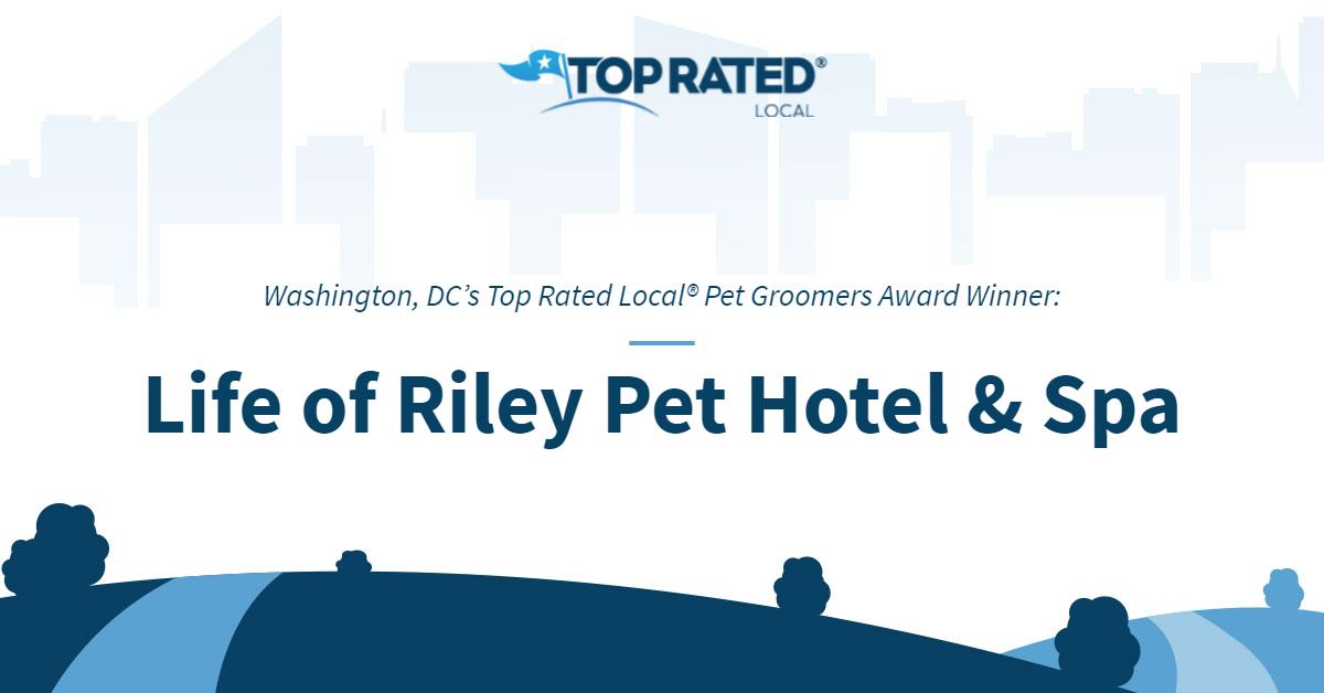 Washington, DC's Top Rated Local® Pet Groomers Award Winner: Life of Riley Pet Hotel & Spa